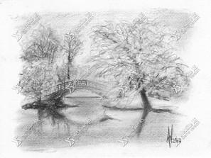 Landschap Anka Willems Illustrator Kunstenaar